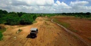 Yala National Park road