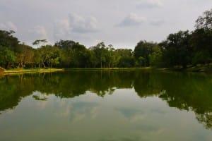 Pond at Polonnaruwa