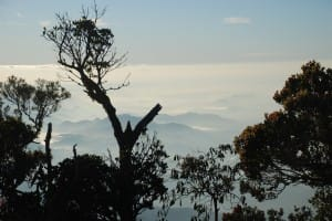 View from top of World's End & Horton Plains National Park