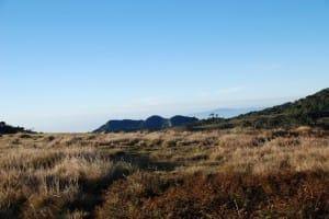 Plains of World's End & Horton Plains National Park
