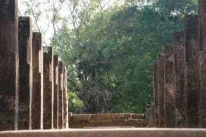Columns at Polonnaruwa