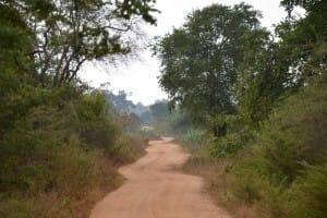 Roadway in Udawalawe National Park