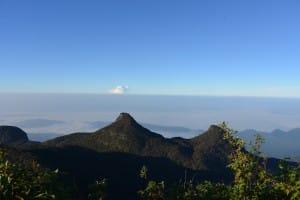 Top view from Adams Peak