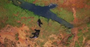 Aerial view of Yala National Park