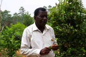 Farmer at Handunugoda Tea Estate