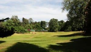 Kandy grounds
