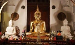 Golden Bhudda