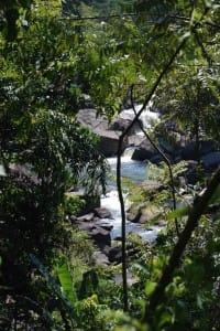 Waterfall at Sinharaja Rain Forest