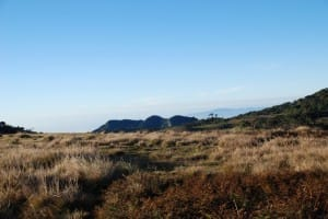 Plains of World's End & Horton Plains National Park