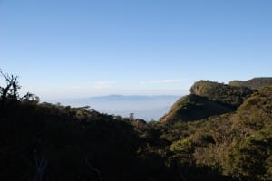 Scenery at World's End & Horton Plains National Park