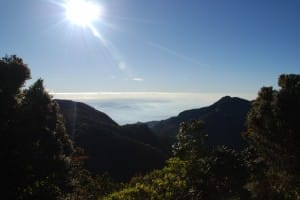 Sunny day at World's End & Horton Plains National Park
