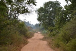 Roadway in Udawalawe National Park