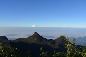 Top view from Adams Peak
