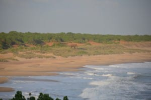 Beach at Bundala National Park